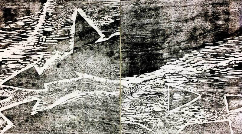 black and white abstract imagery, flowing organic forms combined with floating triangles